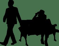 Как подать на развод в одностороннем порядке в суде